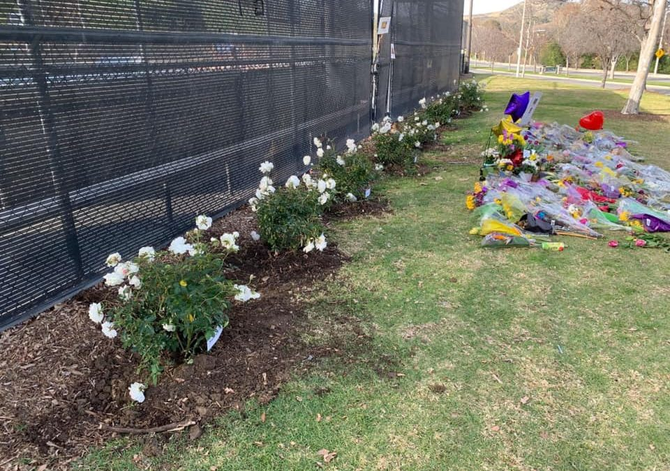 Calabasas Creates Kobe Crash Memorial